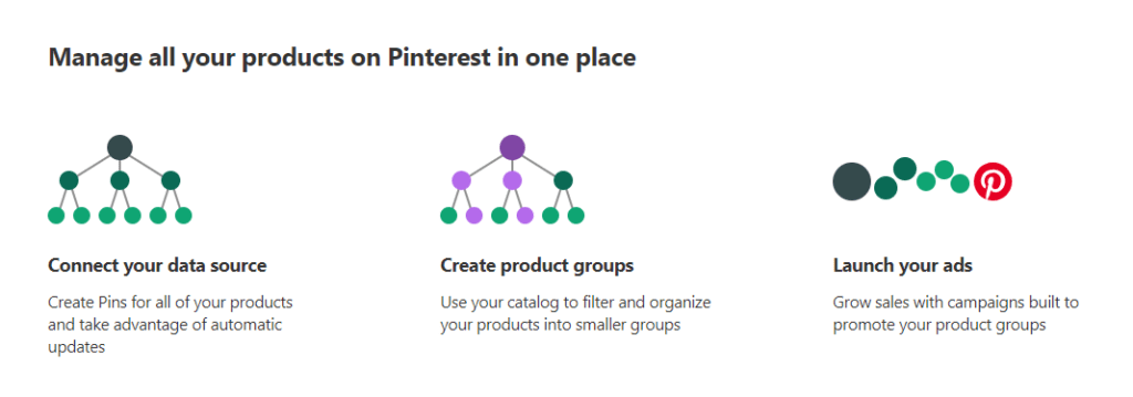 New Pinterest feature in 2019